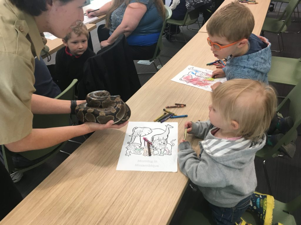 Photo of two children looking at a snake